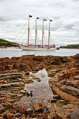 Best Sailing Photograph - Bar Harbor by Marcia Colelli