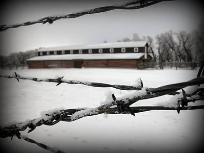 Shed Digital Art - Barbed Wire Barn by Krista Carofano