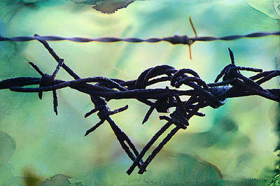 Barbed Wire Photograph - Barbed Wire Love-jealousy 2 by Lesa Fine