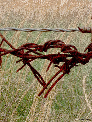 Barbed Wire Photograph - Barbed Wire Love - Photo Print by Lesa Fine
