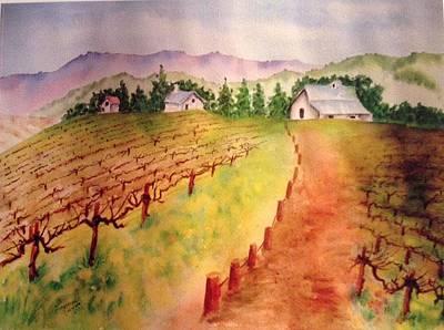 Grape Photograph - Bare Vines by Laurine  Fuqua