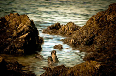Barking Painting - Barking Seals by Barbara Snyder