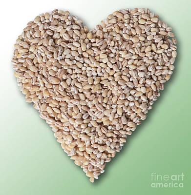 Heart Healthy Photograph - Barley Heart by Gwen Shockey