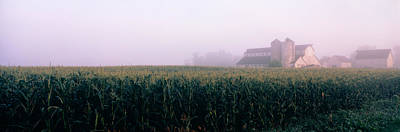 Barn In A Field, Illinois, Usa Print by Panoramic Images