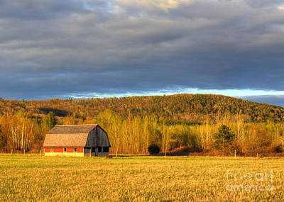 Barn In The Dunes Print by Twenty Two North Photography