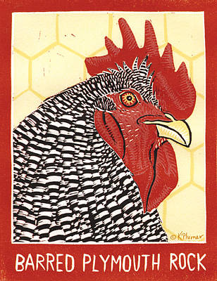 Rooster Drawing - Barred Plymouth Rock by Katherine Plumer