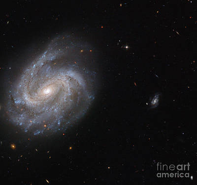 Heavenly Body Photograph - Barred Spiral Galaxy Ngc 201 by Science Source