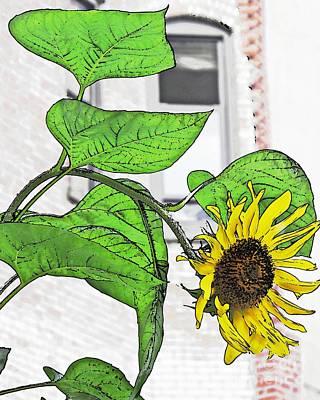 Barrio Sunflower Print by Sarah Loft