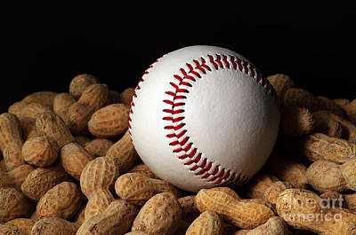 Photograph - Baseball Season by Andee Design