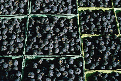 Baskets Of Blueberries Print by Panoramic Images