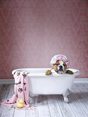 Clean Painting - Bath Time by Lisa Jane