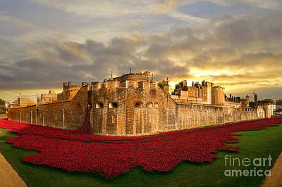 Tower Of London Digital Art - Bathed In Gold  by J Biggadike