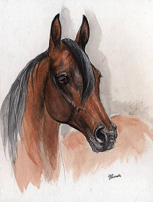 Bay Arabian Horse Watercolor Portrait 08 03 2013 Original by Angel  Tarantella