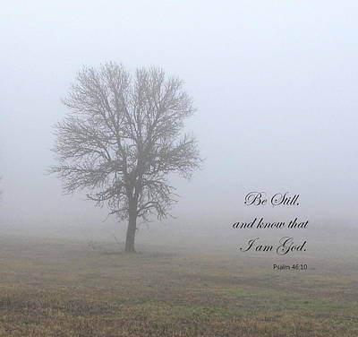 Bible Verse Photograph - Be Still by Angie Vogel