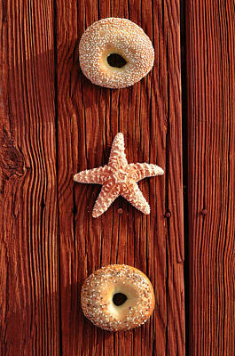 In A Row Photograph - Beach Bagels by Laura Fasulo