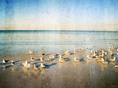 Beach Combers - Seagull Art By Sharon Cummings Print by Sharon Cummings