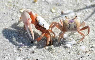 Beach Photograph - Beach Crabs R Us by Patricia Twardzik
