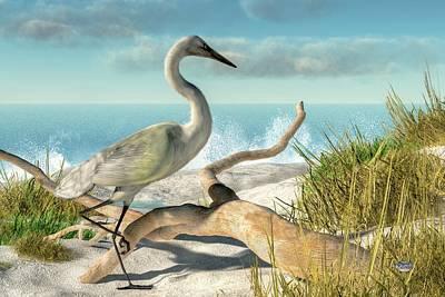 Stork Digital Art - Beach Egret by Daniel Eskridge