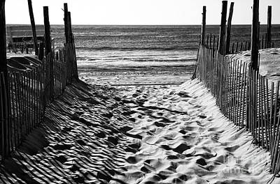 Sand Fences Photograph - Beach Entry Black And White by John Rizzuto