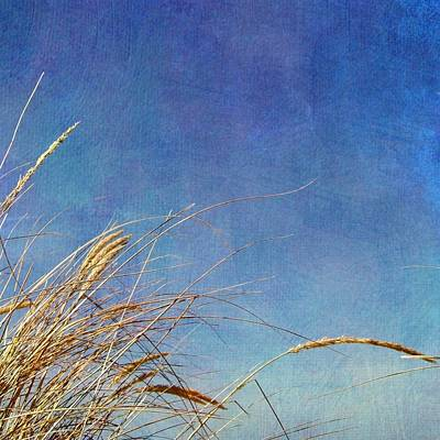 Beach Grass In The Wind Print by Michelle Calkins