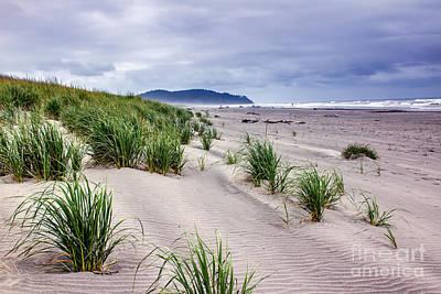 Beach Grass Print by Robert Bales