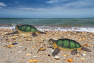 Ocean Turtle Digital Art - Beach Pals II by Betsy C Knapp
