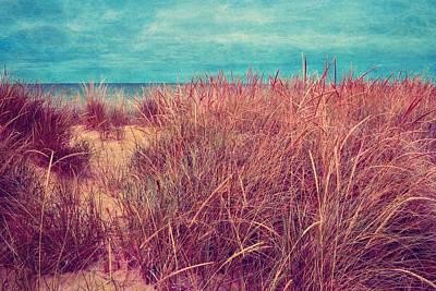Beach Path Through The Grasses Print by Michelle Calkins