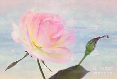 Beach Rose Print by Kaye Menner