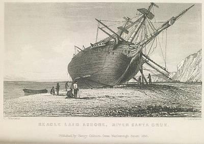 Beagle Photograph - Beagle Laid Ashore by British Library