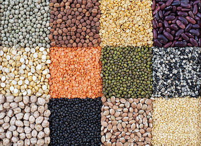 Food Art Photograph - Beans And Pulses by Tim Gainey