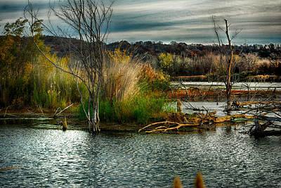 Beautiful Autumn Marsh Print by Kimberleigh Ladd