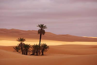 Desert Photograph - Beautiful Desert by Ivan Slosar