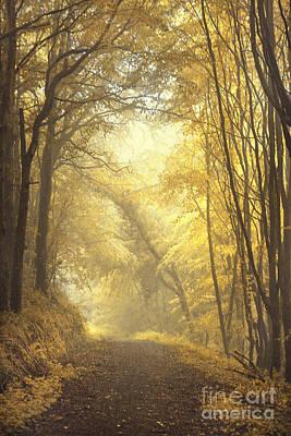 Beautiful Fall Print by Evelina Kremsdorf
