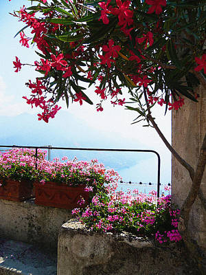 Beautiful Flowers Of Ravello Italy Print by Irina Sztukowski