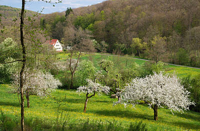 Beautiful Green Spring Landscape Print by Matthias Hauser