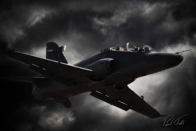 Hawk Mk 120 Photograph - Beautiful Hawk by Paul Job