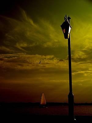 Rick Todaro Photograph - Beautiful Mood  by Rick Todaro