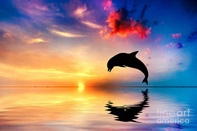 Beautiful Ocean And Sunset With Dolphin Jumping Print by Michal Bednarek
