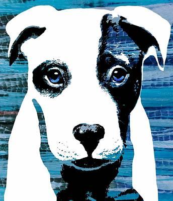 Dog Digital Art - Beautiful Pit by Cindy Edwards