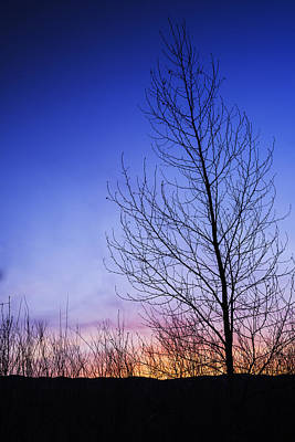 Simple Beauty In Colors Photograph - Beautiful Sunrise In Boise Idaho Usa by Vishwanath Bhat