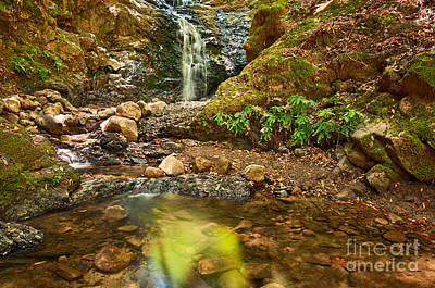 Uva Photograph - Beautiful View Of Upper Falls Located In Uvas Canyon County Park. by Jamie Pham