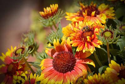 Beauty In The Garden Print by Lynn Bauer