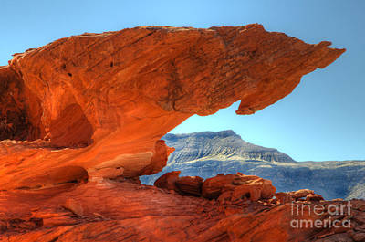 Beauty Of Sandstone Little Finland Print by Bob Christopher