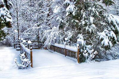 Kathy Jennings Photograph - Beauty Of Winter by Kathy Jennings