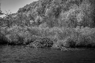 Beaver Photograph - Beaver Lodge Green Pond Morris County New Jersey Painted Bw  by Rich Franco