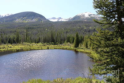 Mountain Reflection Lake Summit Mirror Photograph - Beaver Ponds Rocky Mountains Np by Christiane Schulze Art And Photography