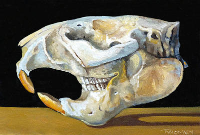Beaver Painting - Beaver Skull 1 by Catherine Twomey