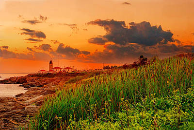 New England Landscape Photograph - Beavertail Spectacular- Beavertail State Park Rhode Island by Lourry Legarde