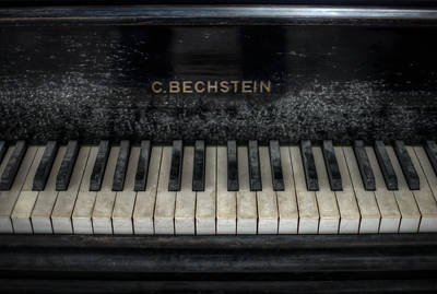 Bechstein Keys Print by Nathan Wright