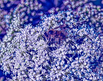 Colourfull Photograph - Bee Abstract - Leif Sohlman by Leif Sohlman